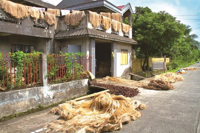 民家の軒先に干されていたアバカ繊維(ビコール地方のカタンドゥアネス島)