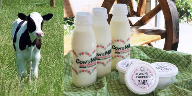 低温殺菌牛乳やヨーグルト