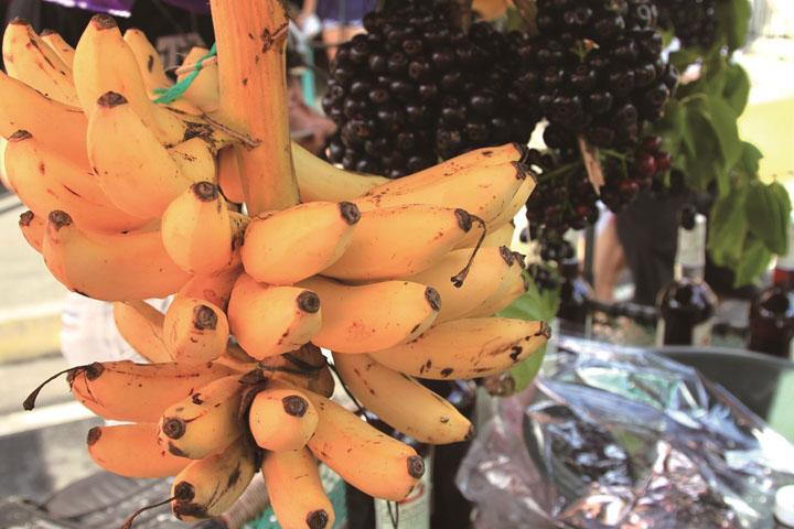 のバナナ Banana