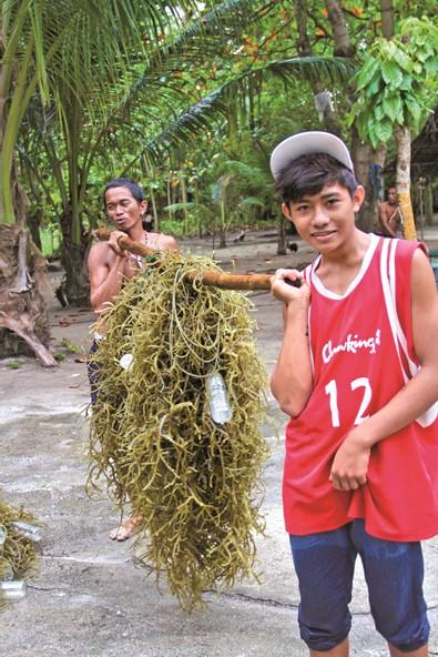 とりたてのアガルアガルを竹の棒にかけて運ぶ人たち。空のペットボトルは苗の浮きに使うようだ。