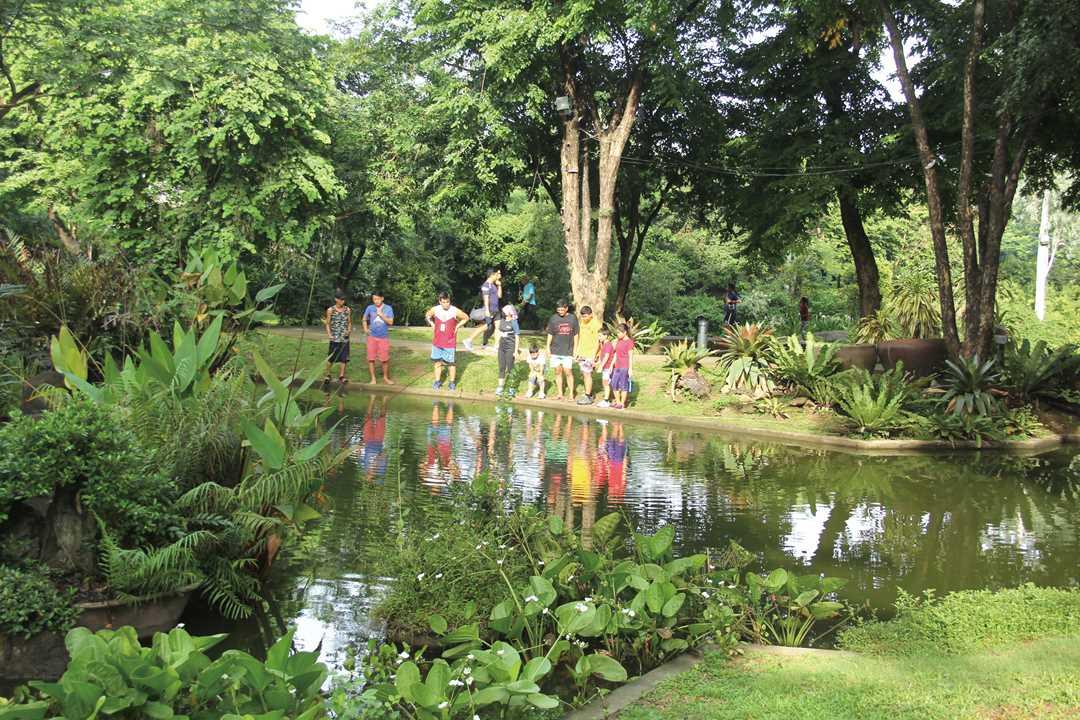 首都圏とは思えないほど緑が多い公園内。池のほとりでしばし足を止めるウォーカーたち