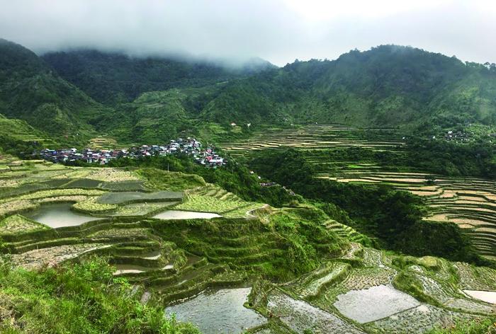 棚田の雄大な景観Majestic landscape of rice terraces